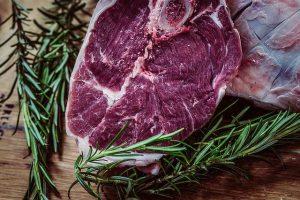 ספר על בשר